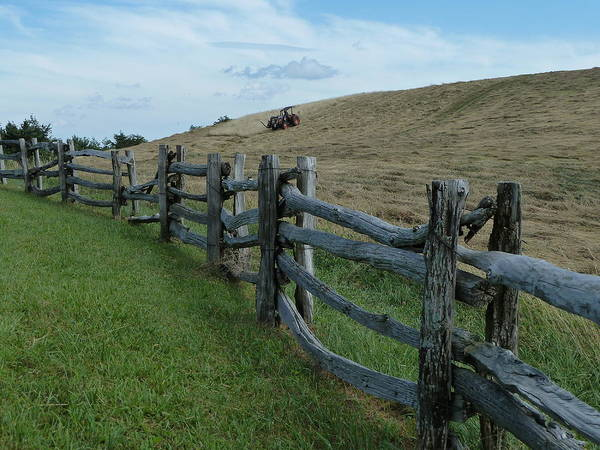 Mowing The Hay Art Print