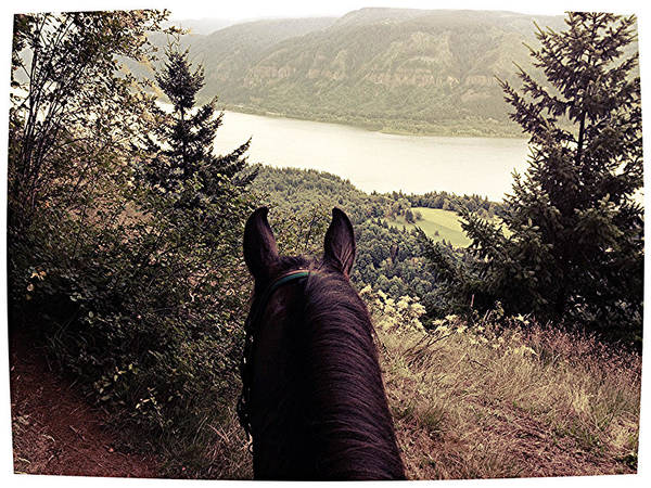 Washougal Photograph - Mr's View 2 by Brittany Sampson