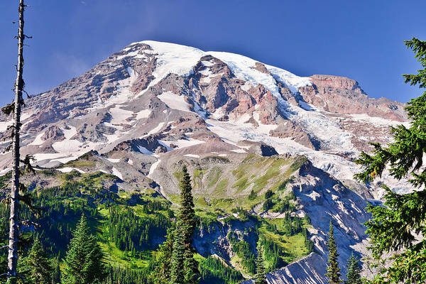 Photograph - Mt Rainier by Greg Norrell