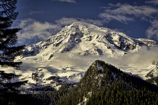 Photograph - Mt Rainier by Heather Applegate