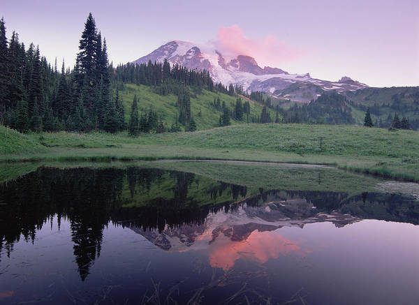 Photograph - Mt Rainier Reflected In Lake Mt Rainier by Tim Fitzharris
