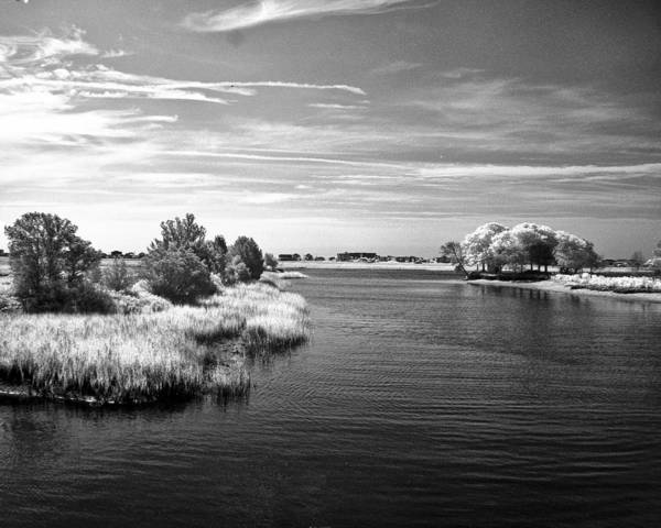 Photograph - Murrells Inlet - Infrared by Bill Barber