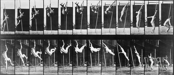 Photograph - Muybridge: Photography by Granger