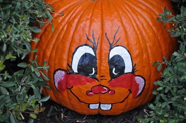 Photograph - My Painted Pumpkin 4 by Teresa Blanton
