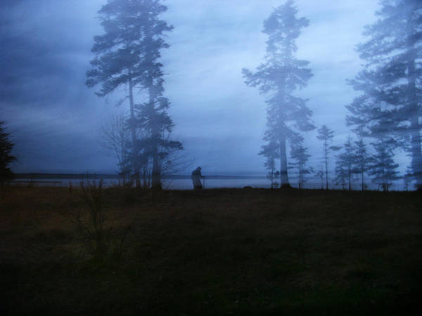 Waskesiu Photograph - Mysterious Woods by Kelsey Horne