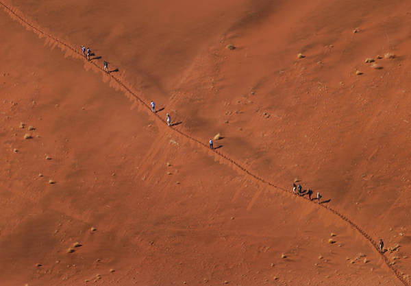 Wanderings Photograph - Namibia Dune Hoppers by Nina Papiorek