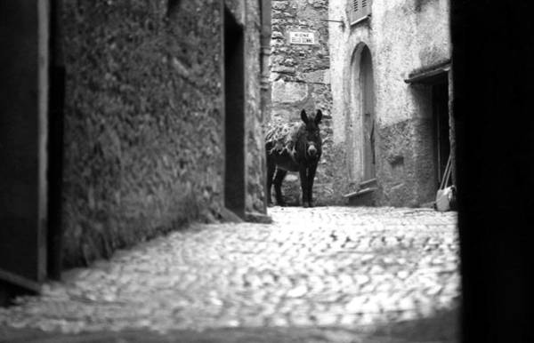 Photograph - Narrow Street In Orvieto Italy by Emanuel Tanjala