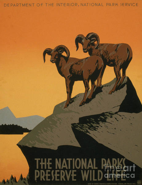 Photograph - National Park Poster, C1937 by Granger