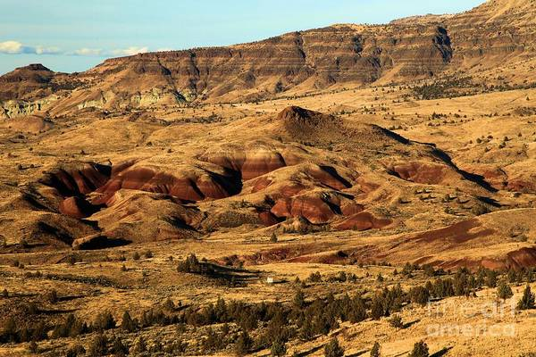 Photograph - Naturally Painted Hills by Adam Jewell