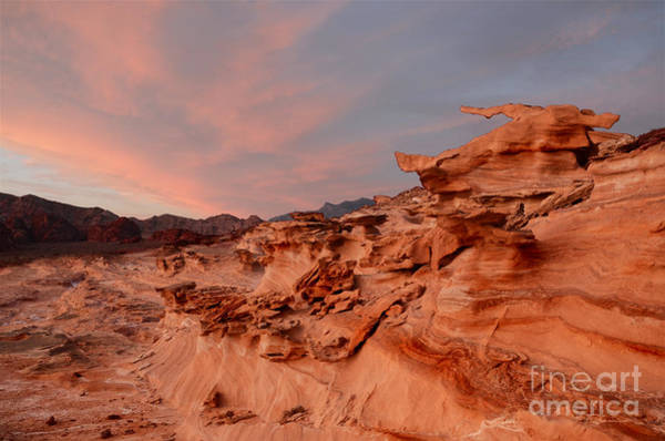 Goblin Valley State Park Photograph - Natures Artistry At Little Finland by Bob Christopher