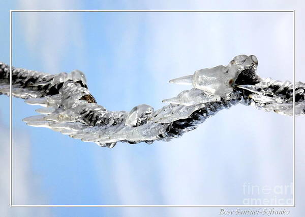 Photograph - Natures Ice Sculptures 8 by Rose Santuci-Sofranko