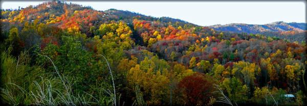 Photograph - Nc Blue Ridge Mountains by Sheila Kay McIntyre