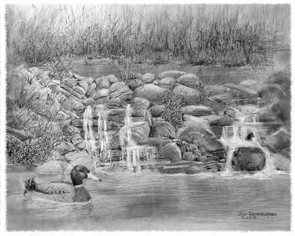 Great Blue Heron Drawing - Near Glenview by Jim Hubbard