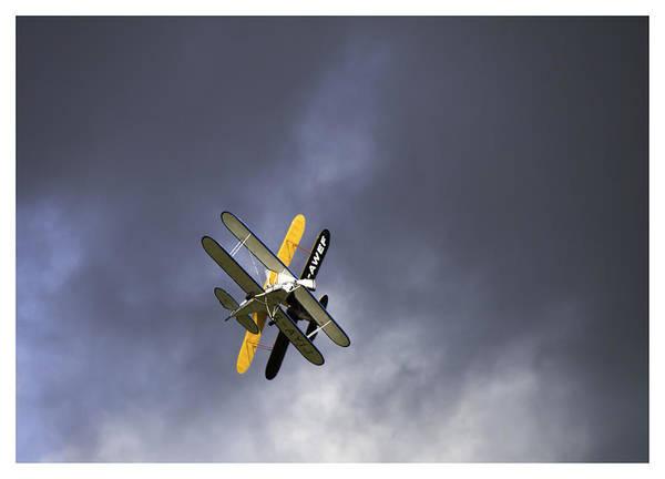 Moth Photograph - Near Miss by Nigel Jones