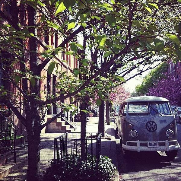 Vw Bus Photograph - Neato by Katie Cupcakes