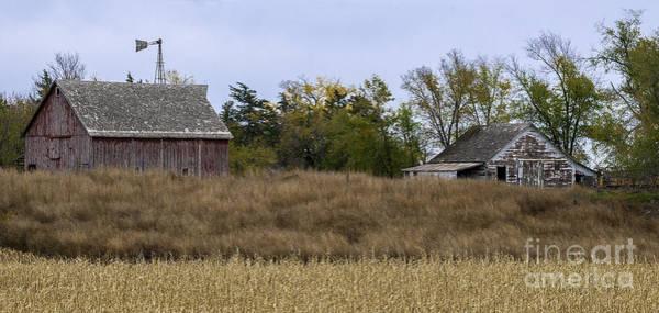 Photograph - Nebraska Barns by David Waldrop