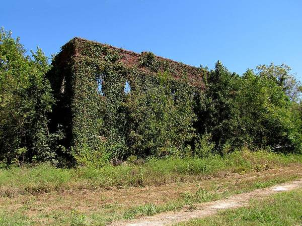 Photograph - Neosho Falls Ghost Town by Keith Stokes