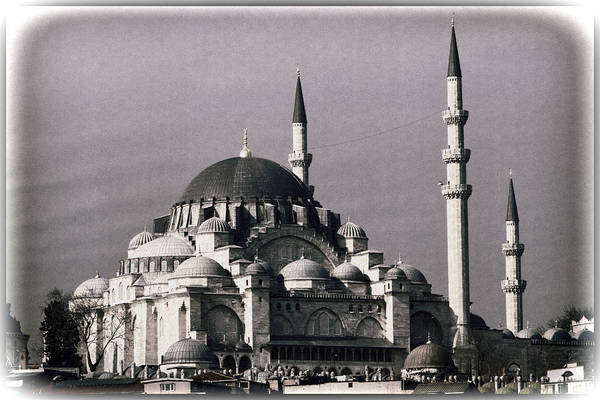 Mosque Photograph - New Mosque by Joan Carroll