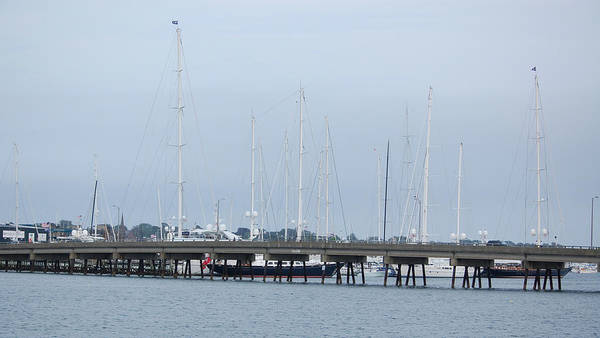 Photograph - Newport Ri Ship Masts by Mary McAvoy