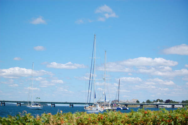 Photograph - Newport Ri Summertime by Mary McAvoy