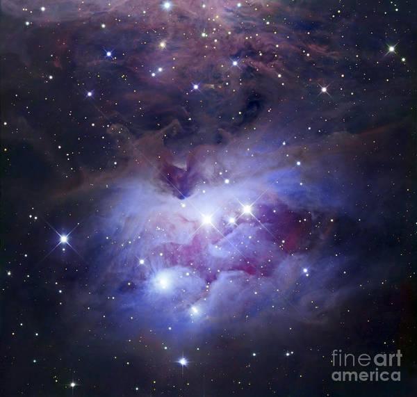 Photograph - Ngc 1977 Is A Reflection Nebula by Robert Gendler
