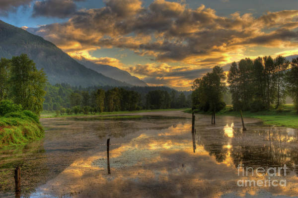 Mission Bc Photograph - Nicomen Slough 3 by Rod Wiens