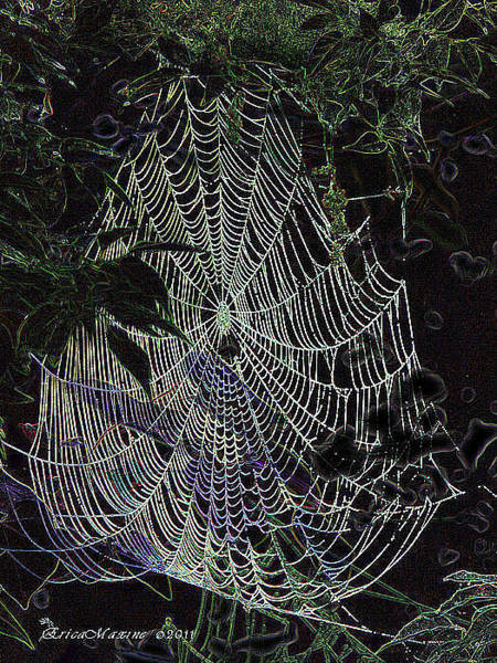 Photograph - Night Lines by Ericamaxine Price