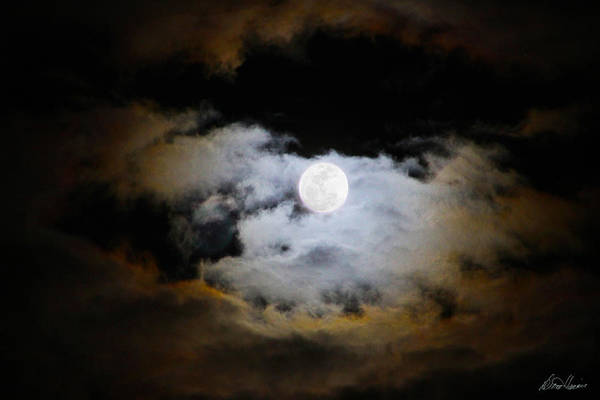 Photograph - Night Of The Full Moon by Diana Haronis