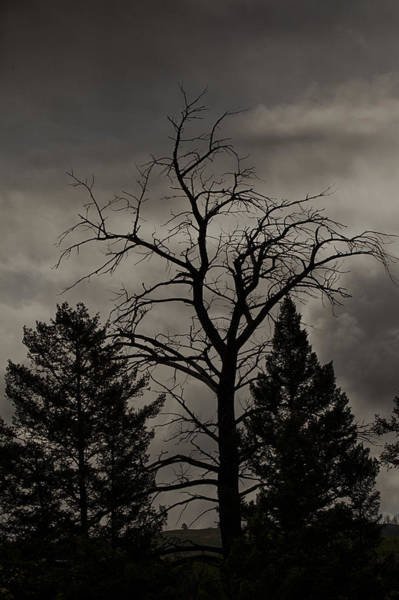 Photograph - Nightfalls by Jack R Perry