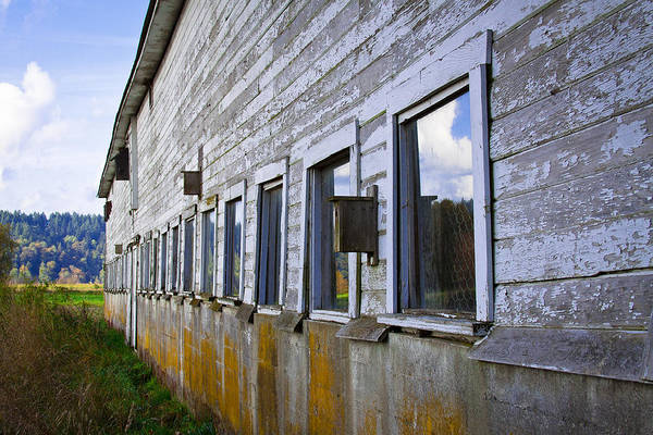 Photograph - Nisqually Wildlife Refuge P18 The Barn by David Patterson