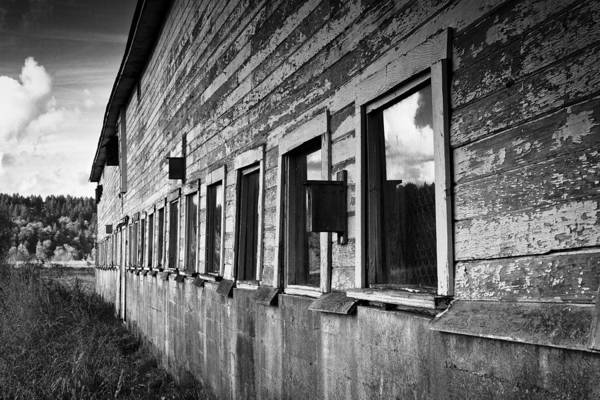 Photograph - Nisqually Wildlife Refuge P18 The Barn II by David Patterson