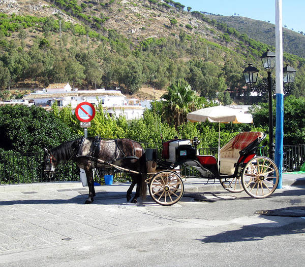 Photograph - No Parking Except Horse Carriage Mijas Spain by John Shiron