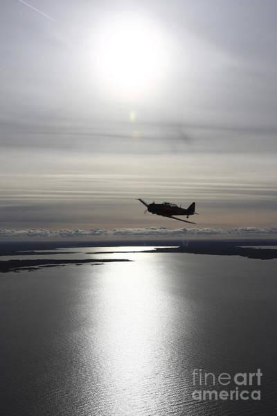 Photograph - North American Aviation T-6 Texan by Daniel Karlsson