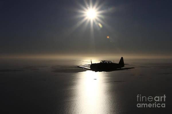Photograph - North American T-6 Texan Trainer by Daniel Karlsson