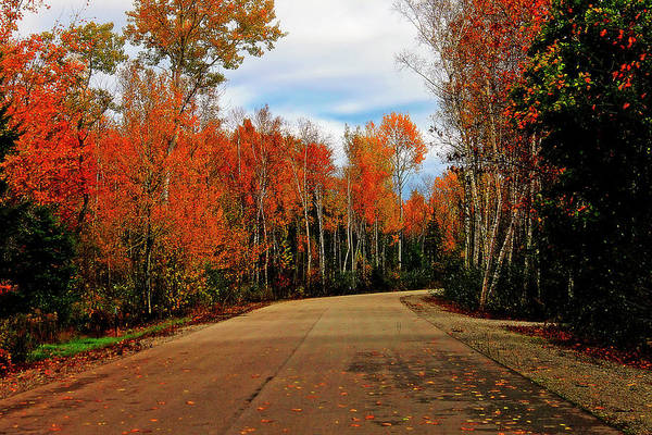 Photograph - Northern Michigan Autumn 4 by Scott Hovind