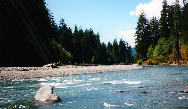 Photograph - Northwest River by C Sitton