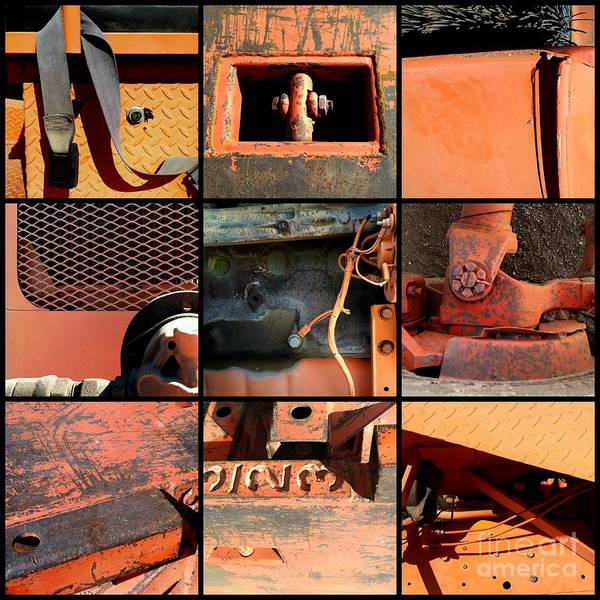 Photograph - Nothing Rhymes With Orange by Marlene Burns