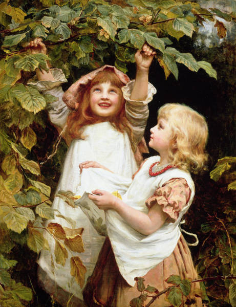Reach Wall Art - Painting - Nutting by Frederick Morgan