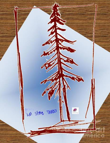 Evergreen Trees Drawing - Nw Evergreen Tree by Carol Rashawnna Williams