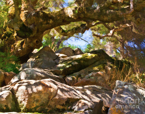 Granite Digital Art - Oak Canopy by L J Oakes