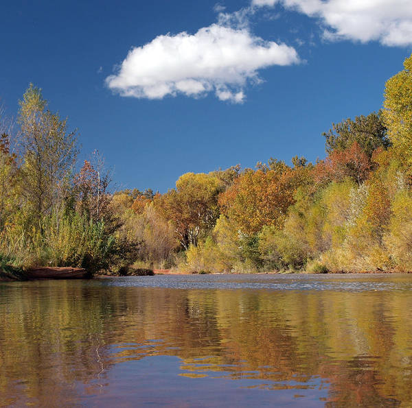 Photograph - Oak Creek Reflection by Joshua House