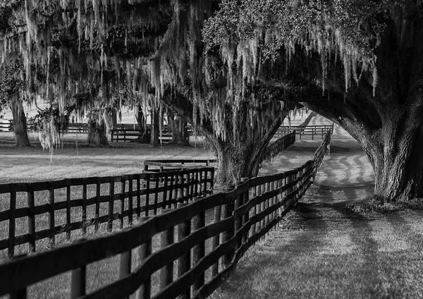 Blye Photograph - Ocala Ranch by Kenneth Blye