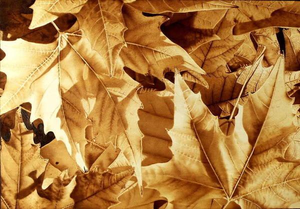 Pirografia Wall Art - Pyrography - October by Juan Carlos Gonzalez
