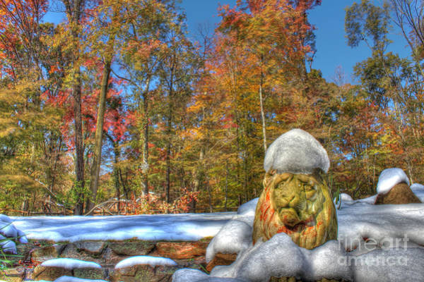 Wall Art - Photograph - October Snow by Lee Dos Santos