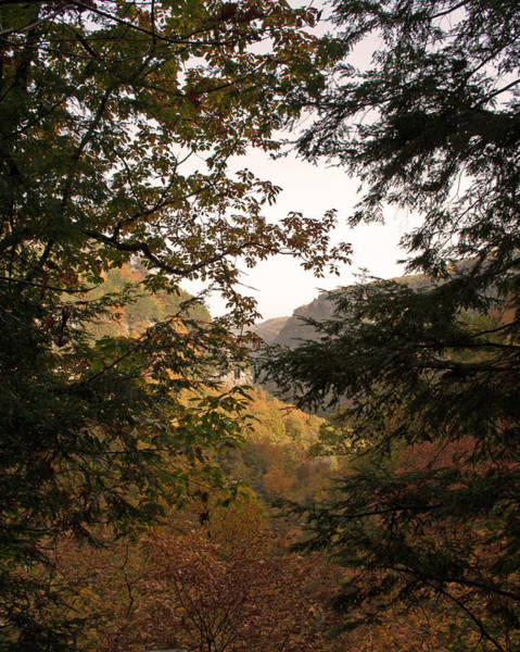 Cloudland Canyon Photograph - October Window by David Troxel