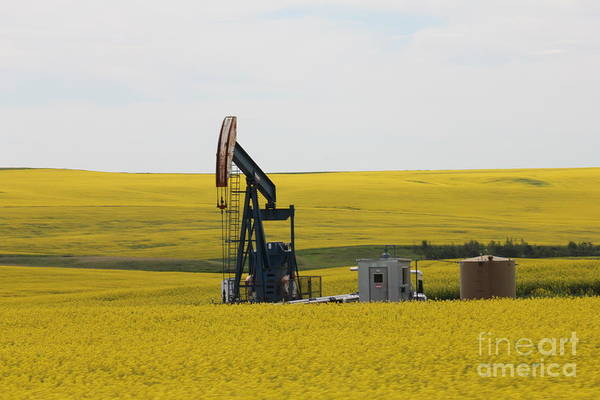 Photograph - Oil Pump by Donna L Munro