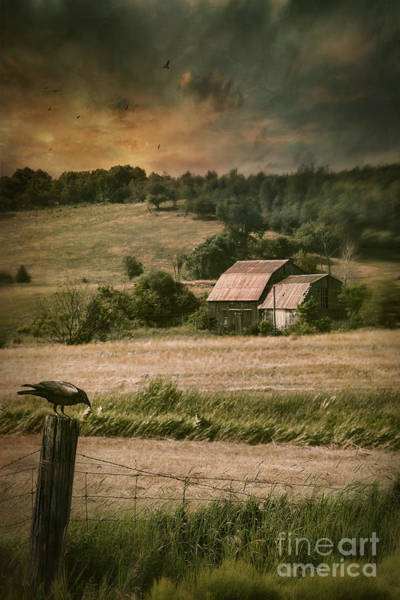 Photograph - Old Barm In Farm Field At Sunset by Sandra Cunningham