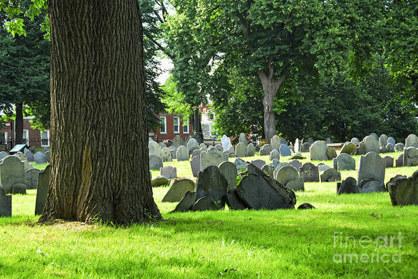 Funeral Photograph - Old Cemetery In Boston by Elena Elisseeva