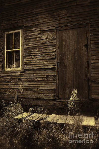 Photograph - Old Derelict Door Of An Abandoned House by Sandra Cunningham