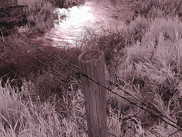 Photograph - Old Fence by HW Kateley